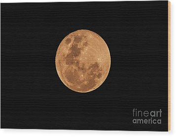 Post-penumbral Moon Wood Print by Venura Herath
