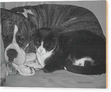 Precious Pals Wood Print by DigiArt Diaries by Vicky B Fuller