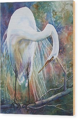 Preening Egret Wood Print by Sue Zimmermann