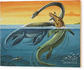 Prehistoric Creatures In The Ocean Wood Print