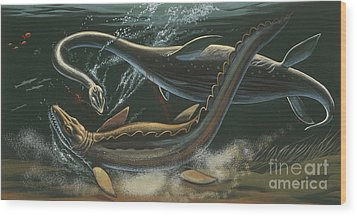 Prehistoric Marine Animals, Underwater View Wood Print