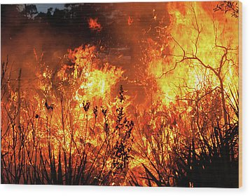 Wood Print featuring the photograph Prescribed Burn by Arthur Dodd