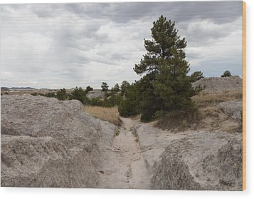 Preserved Wagon Ruts Of The Oregon Trail On The North Platte River Wood Print by Carol M Highsmith