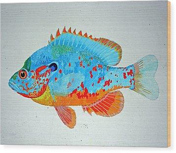Pretty Blue Fish Wood Print by Don Seago