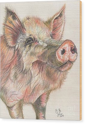 Pretty Imporkant Pig Wood Print by Chris Bajon Jones