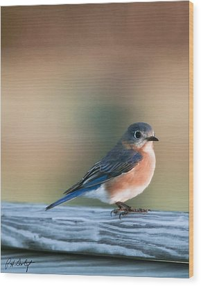 Pretty In Blue Wood Print by Phill Doherty
