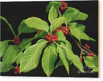 Wood Print featuring the photograph Pretty Little Red Berries by Lois Bryan