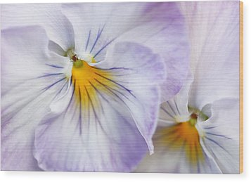 Pretty Pansy Flowers Wood Print by Jennie Marie Schell