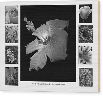 Wood Print featuring the photograph Pretty Petals Collection II by Diane E Berry