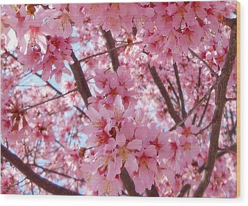 Pretty Pink Cherry Blossom Tree Wood Print