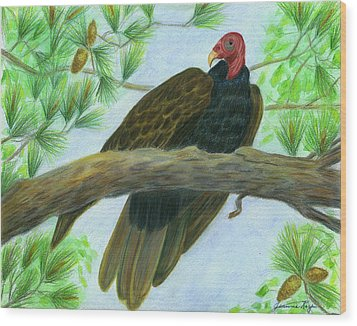Pretty Redhead Turkey Vulture Wood Print by Jeanne Kay Juhos