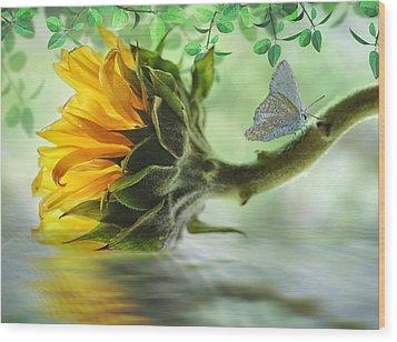 Pretty Sunflower Wood Print