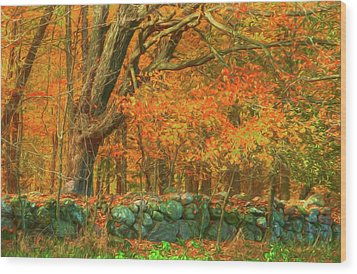 Preuss Road Stone Wall Wood Print