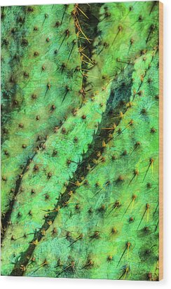 Wood Print featuring the photograph Prickly by Paul Wear