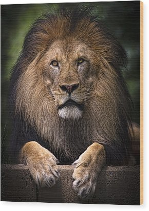 Wood Print featuring the photograph Pride by Cheri McEachin