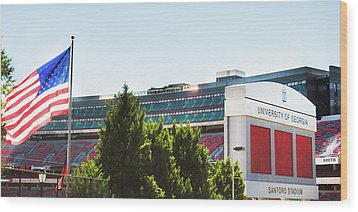 Wood Print featuring the photograph Pride Of Athens by Parker Cunningham