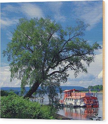 Pride Of The Susquehanna Wood Print