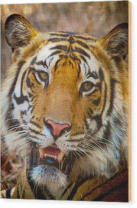 Prime Tiger Wood Print