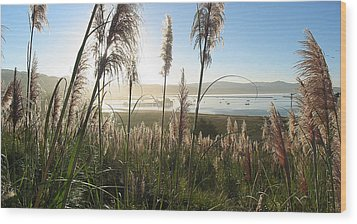 Princeton Harbor. California Wood Print by Bob Bennett