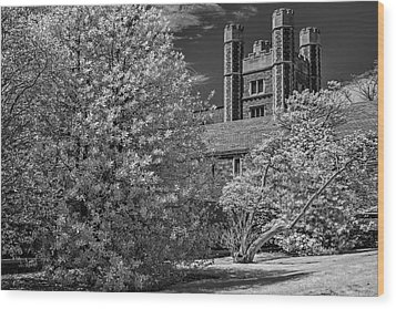 Wood Print featuring the photograph Princeton University Buyers Hall by Susan Candelario