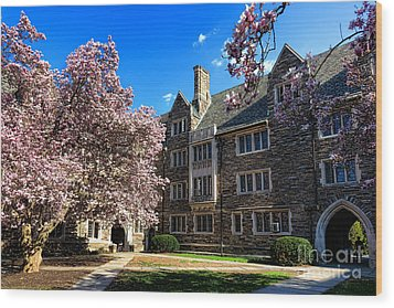 Princeton University Pyne Hall Courtyard Wood Print