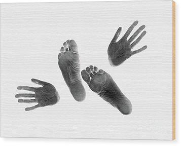 Prints #3108 Wood Print by Andrey Godyaykin