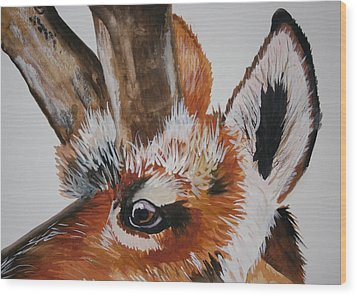 Pronghorn Wood Print