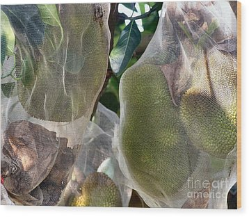 Protect Your Durian Wood Print by Kathy Daxon