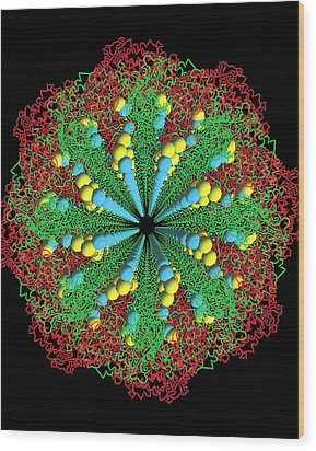 Protein Nanotube Wood Print by Nasa