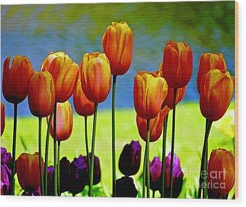 Proud Tulips Wood Print