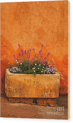 Wood Print featuring the photograph Provencal Melody by Olivier Le Queinec