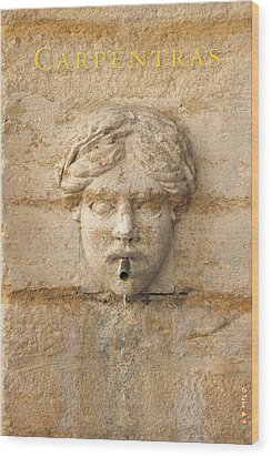 Provence Fountain 1 Carpentras Wood Print by Philippe Taka
