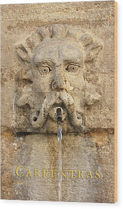 Provence Fountain 2 Carpentras Wood Print by Philippe Taka