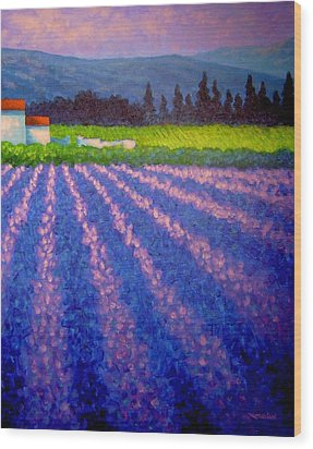 Provence Wood Print by John  Nolan
