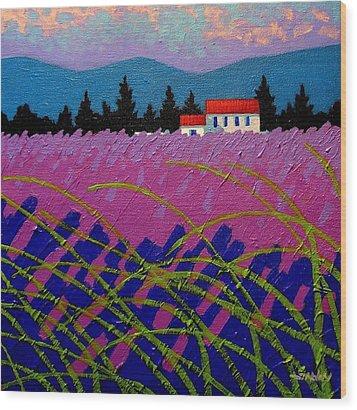 Provence Landscape Wood Print by John  Nolan