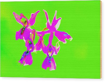 Green Provence Orchid  Wood Print