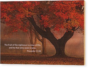 Wood Print featuring the photograph Proverbs 11 30 Scripture And Picture by Ken Smith