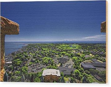 Provincetown Panoramic Aerial Wood Print by Dapixara Art
