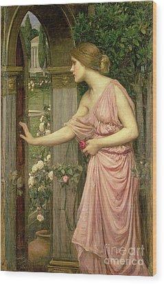 Psyche Entering Cupid's Garden Wood Print by John William Waterhouse
