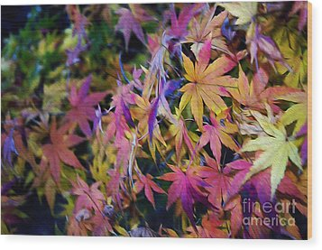 Psychedelic Maple Wood Print by Kaye Menner