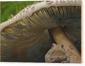 Wood Print featuring the photograph Pucker Up Princess by Annette Hugen
