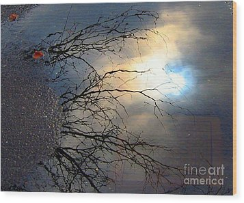 Puddle Art Wood Print