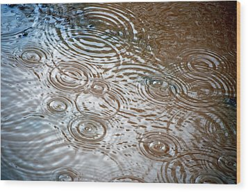 Wood Print featuring the photograph Puddle Patterns by Gwyn Newcombe