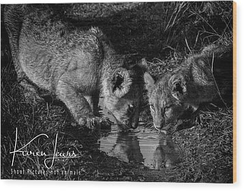 Wood Print featuring the photograph Puddle Time by Karen Lewis