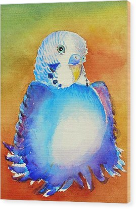 Pudgy Budgie Wood Print by Patricia Piffath