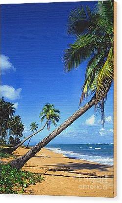 Puerto Rico North Shore Wood Print by Thomas R Fletcher