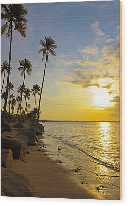 Puerto Rico Sunset Wood Print by Stephen Anderson