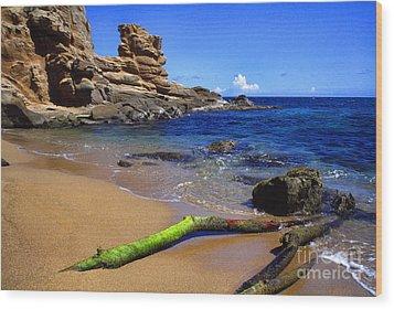 Puerto Rico Toro Point Wood Print by Thomas R Fletcher