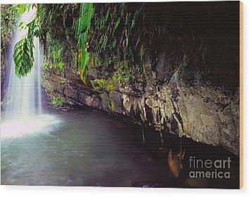 Puerto Rico Waterfall Wood Print by Thomas R Fletcher