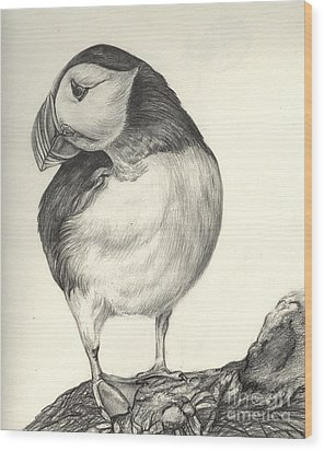 Puffin Wood Print by Aurora Jenson